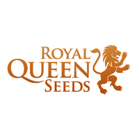 Royal Queen Seeds Blog - Cannabis Seeds Store