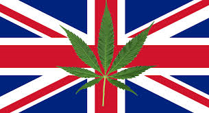 Cannabis UK | Cannabis Seeds Store
