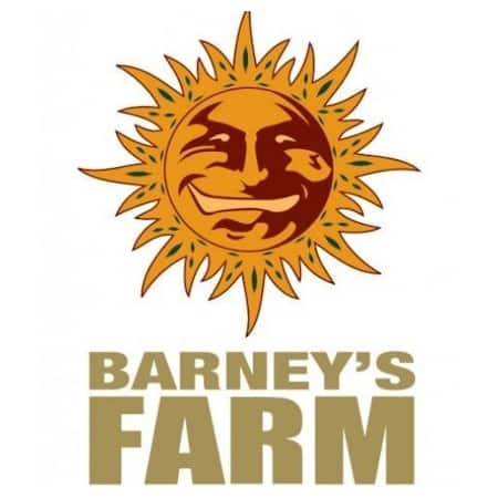 Cannabis Seeds Review - Barneys Farm - Cannabis Seeds Store