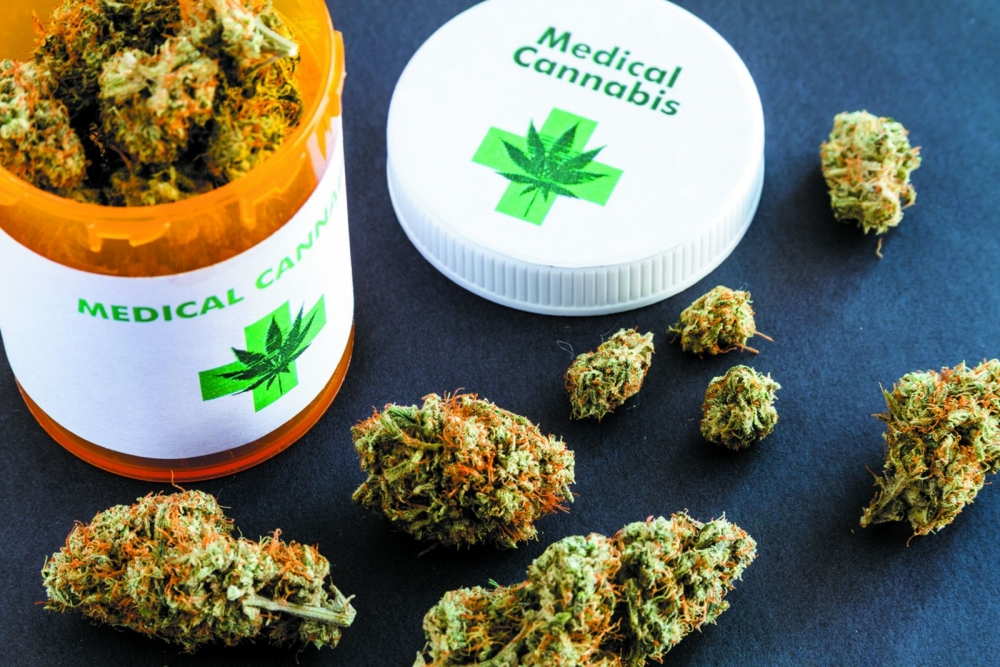Medical Cannabis Seeds The Guide - Cannabis Seeds Store