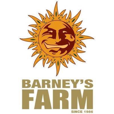 Cannabis Seeds by Barney's Farm - Cannabis Seeds Store