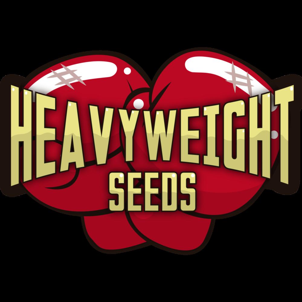 Heavyweight Cannabis Seeds Reviews - Cannabis Seeds Store.