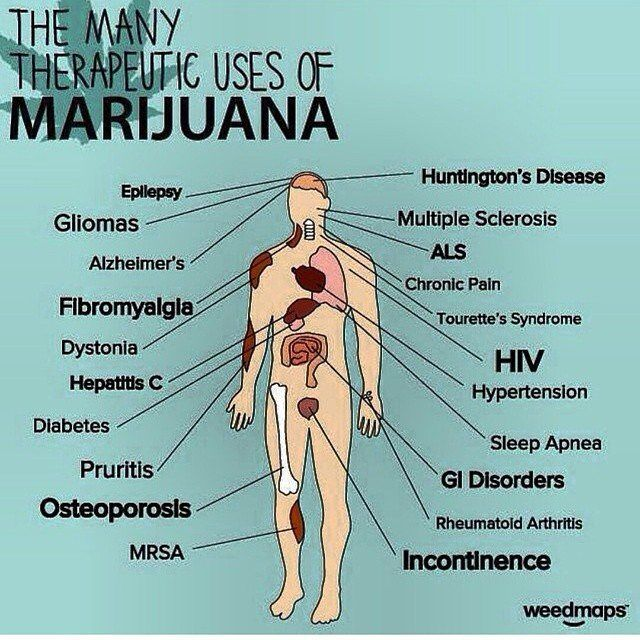 Cannabis Seeds can be used for Medicine ...