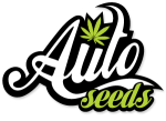 Auto Seeds Autoflowering Feminised Cannabis Seeds | Cannabis Seeds Store