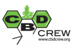 CBD Crew Seeds | Cannabis Seeds Store