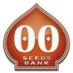 OO Seeds | Cannabis Seeds Store