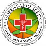 Dispensario Seeds | Cannabis Seeds Store