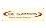 De Sjamann Seeds | Cannabis Seeds Store
