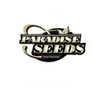 Paradise Cannabis Seeds | Cannabis Seeds Store