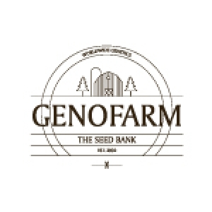 Genofarm Seeds | Cannabis Seeds Store