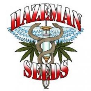 Hazeman Seeds |  Cannabis Seeds Store