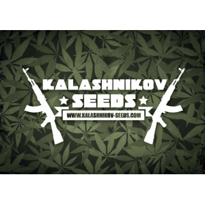 Kalashnikov Seeds | Cannabis Seeds Store