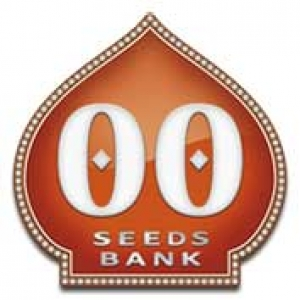OO Seeds | Cannabis Seeds Store
