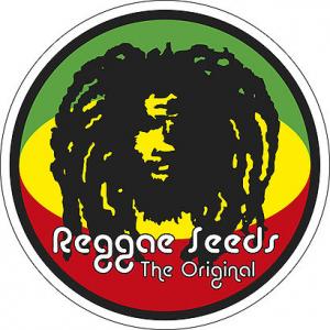 Reggae Seeds | Cannabis Seeds Store