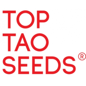 Top Tao Seeds | Cannabis Seeds Store