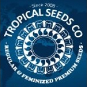 Tropical Seeds | Cannabis Seeds Store