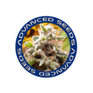 Advanced Seeds | Cannabis Seeds Store