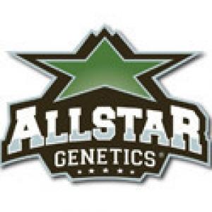 Allstar Genetics Seeds | Cannabis Seeds Store