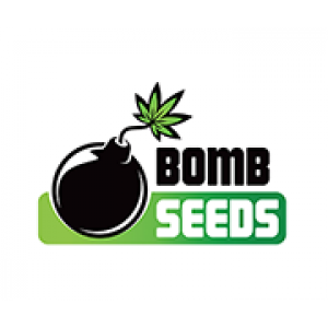 Bomb Seeds | Cannabis Seeds Store