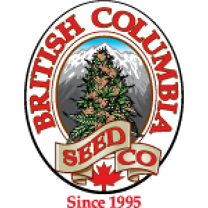British Columbia Seed Company | Cannabis Seeds Store