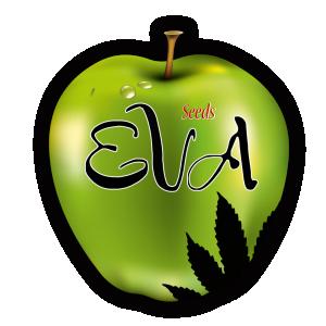 Eva Female Seeds | Cannabis Seeds Store