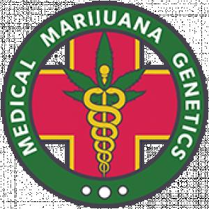 MM Genetics | Cannabis Seeds Store