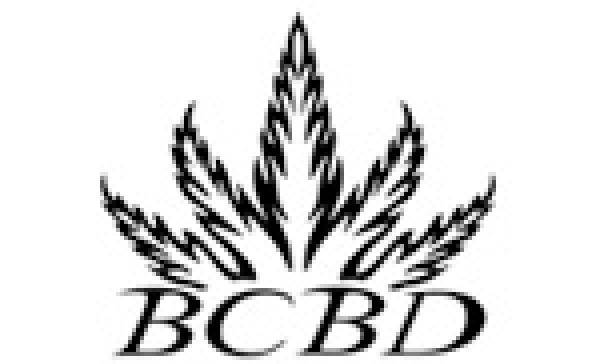 BC Bud Depot Seeds | Cannabis Seeds Store