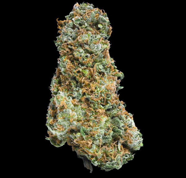Big Bruce Feminised Cannabis Seeds - Megabuds