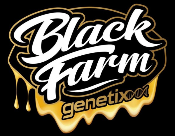 Black Farm Genetix  - Cannabis Seeds Store