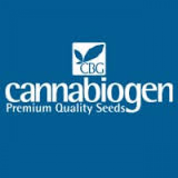 Cannabiogen Cannabis Seeds | Cannabis Seeds Store
