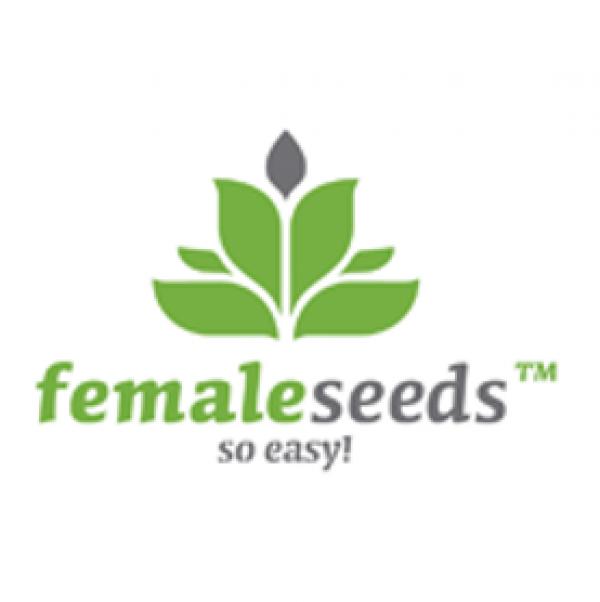 Female Seeds Feminised Cannabis Seeds | Cannabis Seeds Store