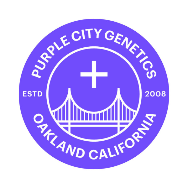 Purple City Genetics - Cannabis Seeds Store