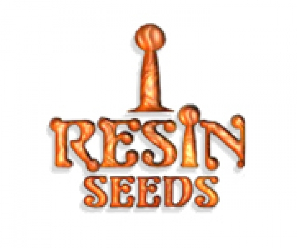 Resin Seeds | Cannabis Seeds Store