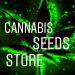 3 Free Critical Mass Seeds - Cannabis Seeds Store