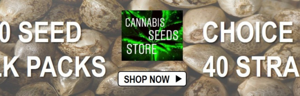 Bulk Seeds Packs - Cannabis Seeds Store