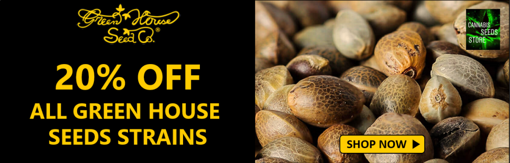25% Of Green House Seeds - Cannabis Seeds Store