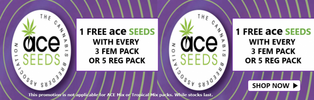 Free Ace Seeds - Cannabis Seeds Store
