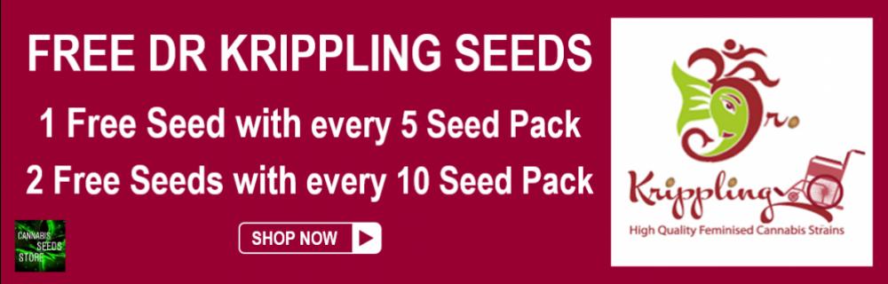 Dr Krippling Free Seeds - Cannabis Seeds Store