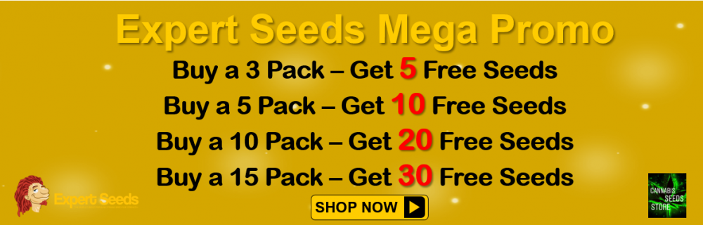 Expert Seeds Mega Promo - Cannabis Seeds Store