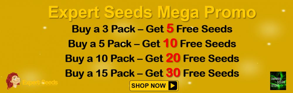 Expert Seeds Mega Promo - Cannabis Seeds Store