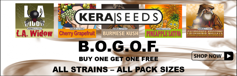 Kera Seeds - Cannabis Seeds Store