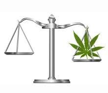 Cannabis Seeds UK Law