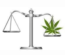 Cannabis Seeds UK Law - Cannabis Seeds Store