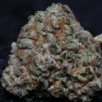 Fire OG Kush Feminised Cannabis Seeds   Big Head Seeds
