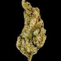 Giant Skittlez Feminised Cannabis Seeds - Megabuds