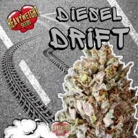 Diesel Drift Feminised Cannabis Seeds   Heavyweight Seeds