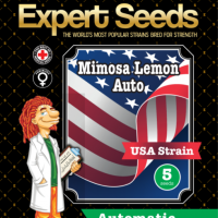 Mimosa Lemon Auto Feminised Cannabis Seeds | Expert Seeds