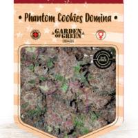 Phantom Cookies Domina Feminised Cannabis Seeds   Garden of Green