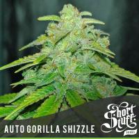 Auto Gorilla Shizzle Feminised Cannabis Seed | Short Stuff Seeds