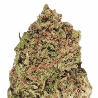 Dream Machine Feminised Cannabis Seeds | Heavyweight Seeds